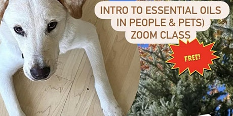 Intro to Essential  Oils in People and Pets tickets