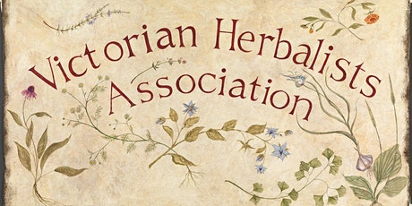 Herbal Medicine Making In Modern Practice with Clara Bitcon Bailey tickets