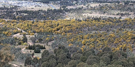 ACF Mt Stromlo Nature Trails tickets