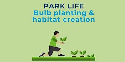 Park Life – Bulb planting & habitat creation at Winton Rec