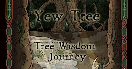 Yew Tree - Tree Wisdom Journey - Online Workshop tickets