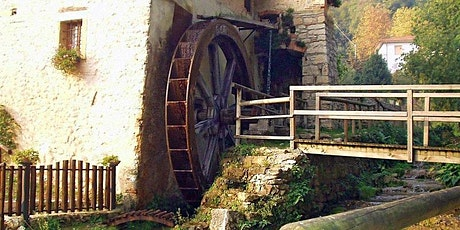 Hiking through mill wheels, caves and vineyards in Mossano (VI) biglietti
