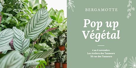 Pop up Végétal Bergamotte // Bruxelles billets