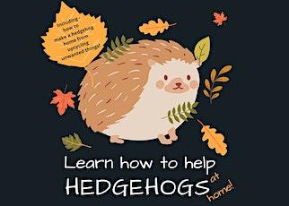 5 best ways to help a Hedgehog 'Talk-shop' tickets