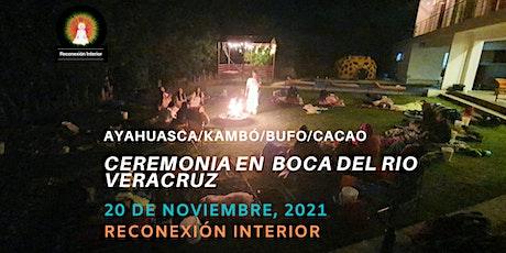Ceremonia en Boca del Rio, Veracruz con Ayahuasca/Kambó/Bufo/Cacao boletos