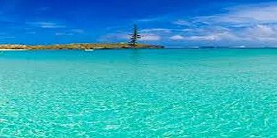 Digitally Savvy Norfolk Island
