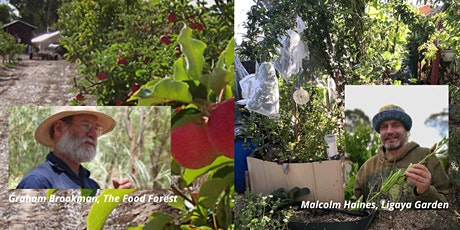 Abundance in Your Summer Garden tickets