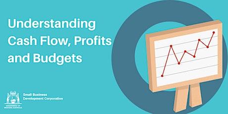 Understanding Cash Flow, Profits and Budgets tickets