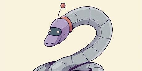 Workshop senioren -- Python reeks tickets