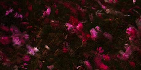 Paysages Intérieurs, rencontres au Japon par Aurélie Kahn billets