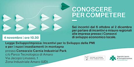 SviluppoImpresa: Incentivi sviluppo PMI e nuovi insediamenti in montagna biglietti