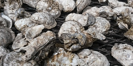 COVA Brewing Oyster Roast 2021 tickets