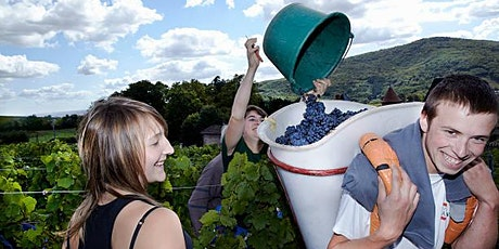Beaujolais Nouveau & Other  French Wines tickets