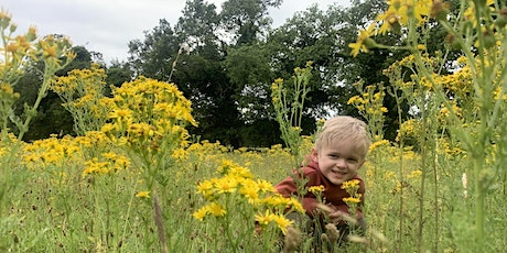 Wild Tots at Redgrave & Lopham Fen - Monday 25th October (ERC 2814) tickets