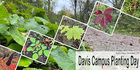 Fall Tree and Shrub Planting Day tickets
