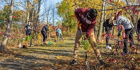 East Hamilton Mountain Planting tickets