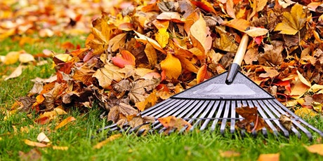 """Fall Gardening: """"To Rake or Not"""" and Other Common Questions LIVESTREAM tickets"""
