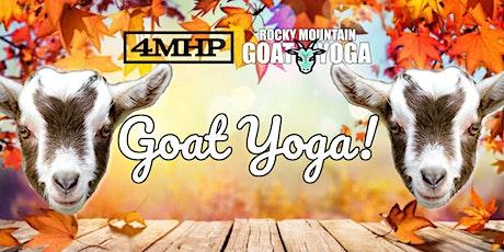 Sunset Baby Goat Yoga - November 6th (FOUR MILE HISTORIC PARK) tickets