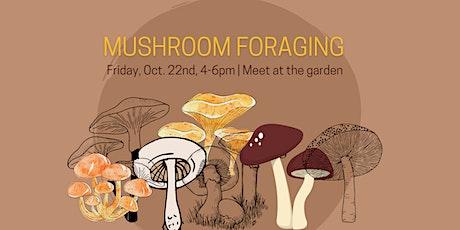 Mushroom Foraging Workshop with DUGS tickets