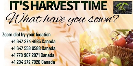 OCTOBER PURPOSED TABLE TALK - IT'S HARVEST TIME , What have you sown? tickets