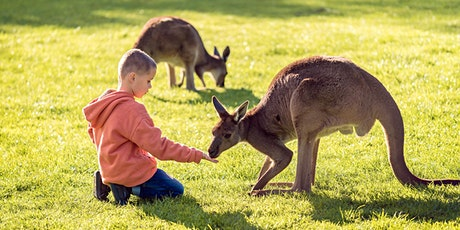 An ADF families end-of-year event: Cleland Wildlife Park, Adelaide tickets