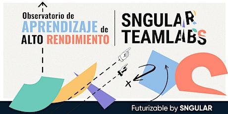 Encuentro de la Comunidad de Aprendizaje de SNGULAR TeamLabs entradas