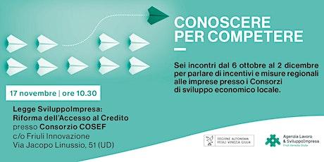 Conoscere per Competere| SviluppoImpresa: Riforma dell'Accesso al Credito biglietti