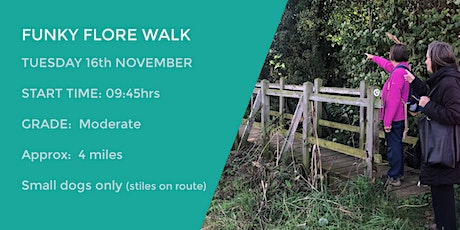 *NEW* FUNKY FLORE WALK | 4 MILES | MODERATE | NORTHANTS tickets