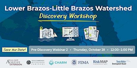Lower Brazos-Little Brazos Pre-Discovery Webinar tickets