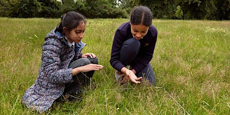 Teacher CPD: Geological Solutions & Exploring Urban Nature tickets