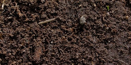 Soil Cycles and Ecological Rifts: A Practical Workshop on Soil Cycling tickets