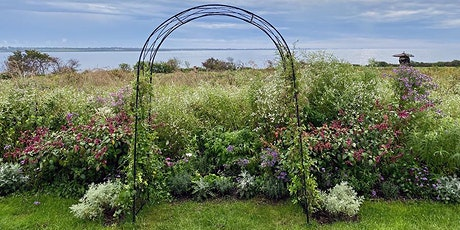 Mini Meadow Making: A Look at Meadows on a Garden Scale tickets