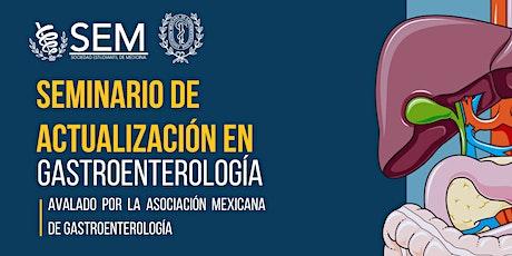 Seminario de Actualización en Gastroenterología entradas