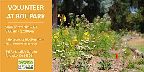 Volunteer Outdoors in Palo Alto: Native Gardening at Bol Park tickets