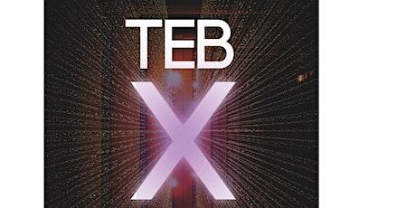 TEB Allstars Benefizkonzert 2021 - FREITAG Tickets