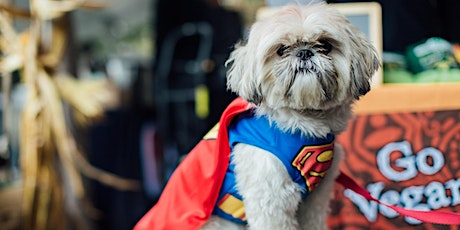 3rd Annual Meatpacking Doggie Costume Contest! tickets