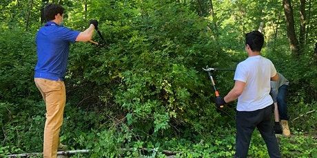 Invasive Plant Management on the Bronx River Reservation tickets