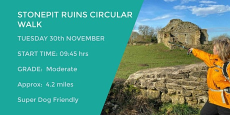 STONEPIT AND THE RUINS CIRCULAR WALK | 4.2 MILES | MODERATE | DAY TIME WALK tickets