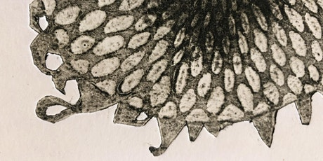 Beginners Collagraph tickets