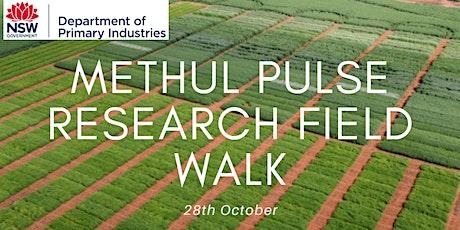 NSW DPI Methul pulse crop research field walk tickets