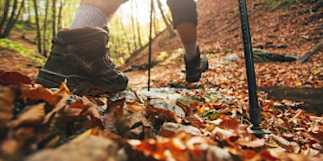 Fall Colors Ridge To River 5 Mile Walk: Orchard & Hard Cider tickets