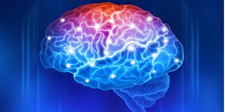 Brain Function 2 Extra Online course for all current students tickets