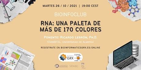 RNA: una paleta de más de 170 colores | BioInfo Club entradas