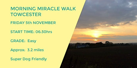 MORNING MIRACLE  TOWCESTER PARKS WALK | NORTHANTS | 3.2 MILES tickets