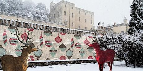 Aperture Straordinarie Natalizie del Castello del Catajo biglietti