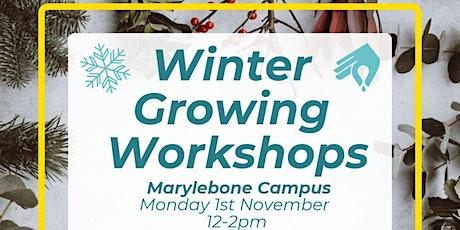 Winter Growing Space Workshop - Marylebone tickets