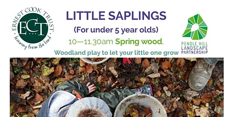 LITTLE SAPLINGS - Spring Wood, Whalley tickets