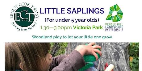 LITTLE SAPLINGS - Victoria Park, Nelson tickets
