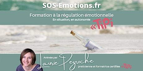 Formation à la régulation émotionnelle (Tipi) en autonomie [Session 1/2] billets
