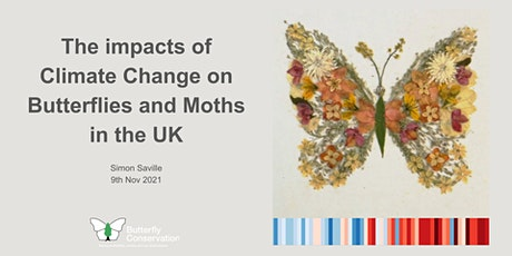Climate change impacts on butterflies and moths in the UK tickets
